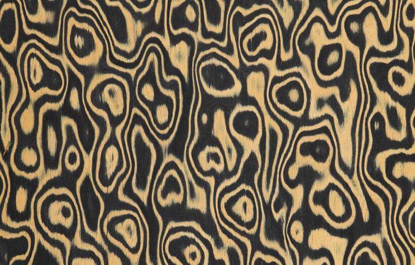 burr walnut veneer