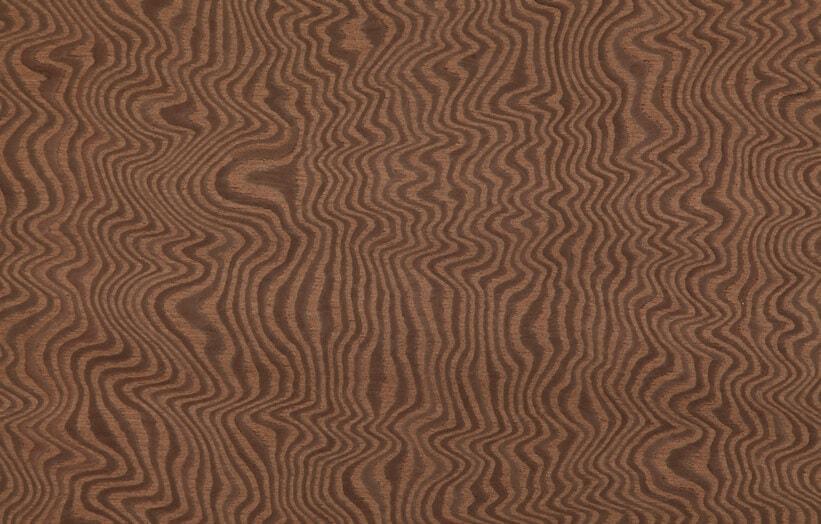 carpathian elm burl veneer