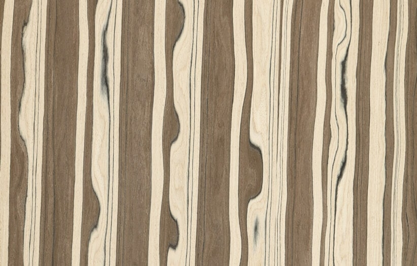 Olive Wood Veneer Engineered Hardwood Veneers Woodenave Com